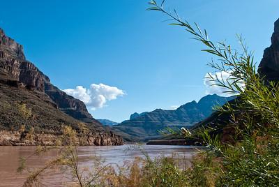Grand Canyon-0117