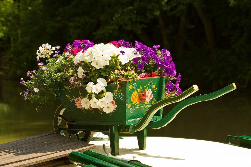 Stoke Bruerne. flower barrow