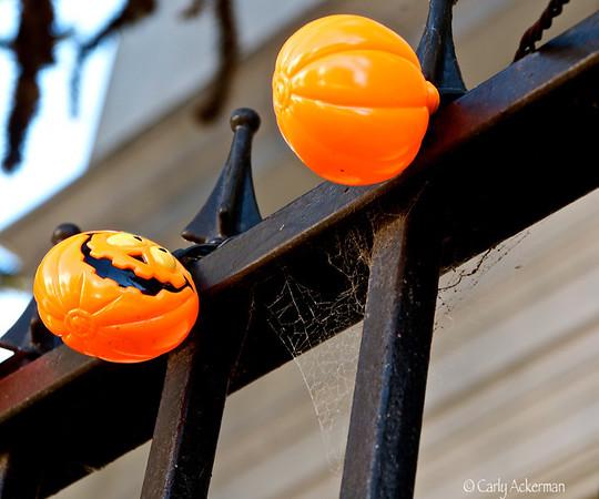 Happy Pumpkins
