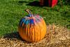 Gourd-geous gourd (prettified pumpkin)