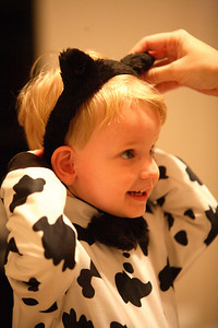 What do you get when you cross a cow and a kitty cat?