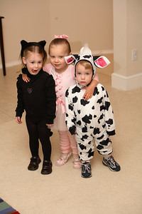 A kitty cat, ballerina and cow.