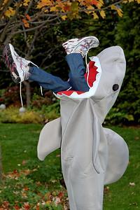 Jack as Shark