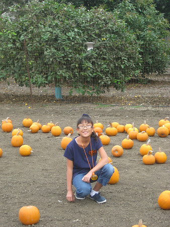 Pumpkins and Halloween 2010