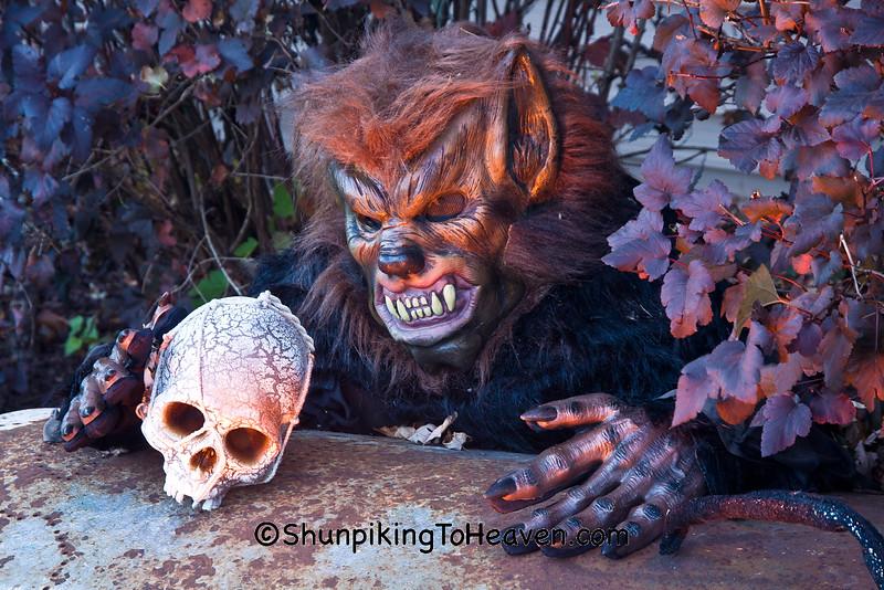 Werewolf and Coffin, Dane County, Wisconsin