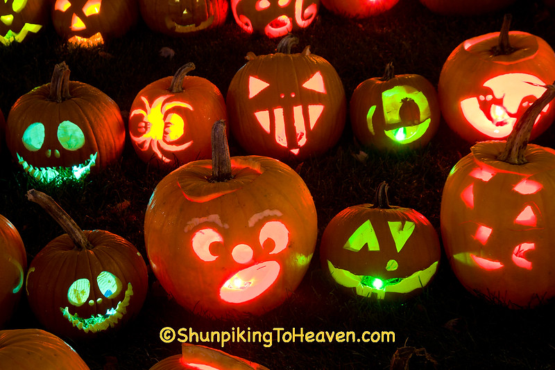 "Pumpkins Carved by Children at ""The Steeple"", Delafield, Wisconsin"
