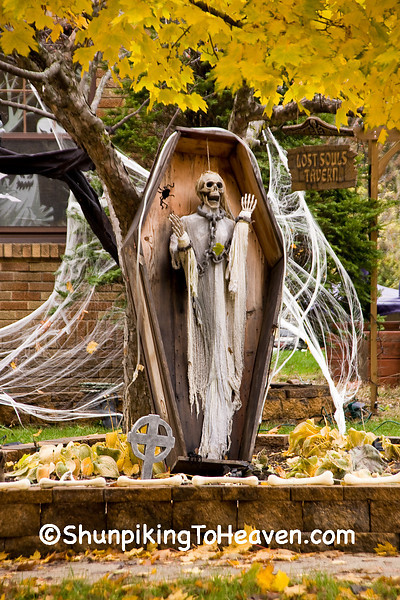 Skeleton in Coffin for Halloween, Columbia County, Wisconsin