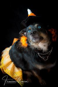 2018   Halloween_101