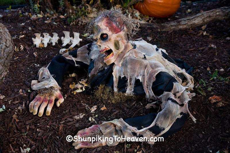 Halloween Zombie, Dane County, Wisconsin
