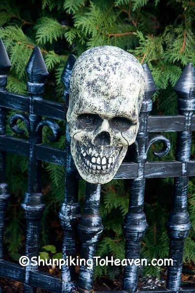 Halloween Skull, Dane County, Wisconsin