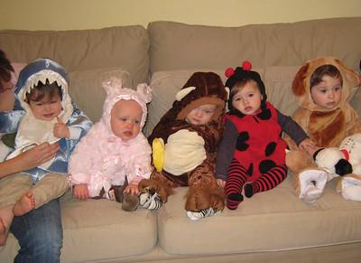 Shark, Bunny, Monkey, Ladybug, Dog