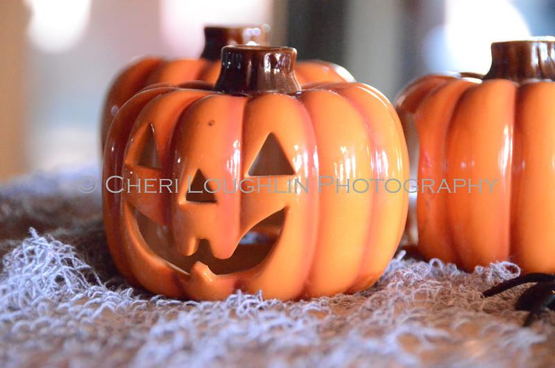 Pumpkins DSC_5403