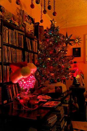 Home Christmas decorations - 2007
