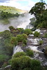 Iguassu Falls - Argentinian Side - Upper Rim of Falls 546