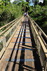 Iguassu Falls - Argentinian Side - Upper Rim of Falls 466