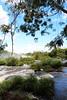Iguassu Falls - Argentinian Side - Upper Rim of Falls 609
