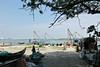 India 2017 - Kochi - Shoreline Walk 13