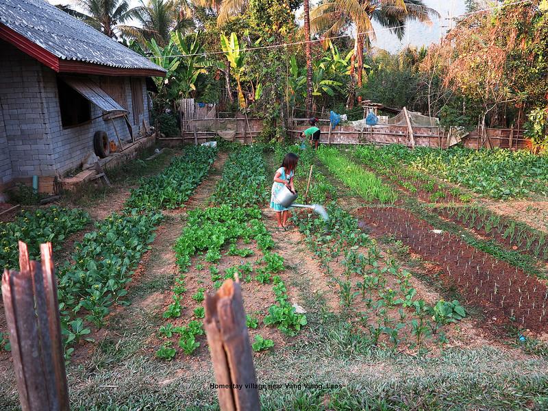 364 Homestay Village, Laos Day 9