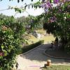 295 Luang Prabang Day 7