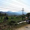 307 Luang Prabang Day 7