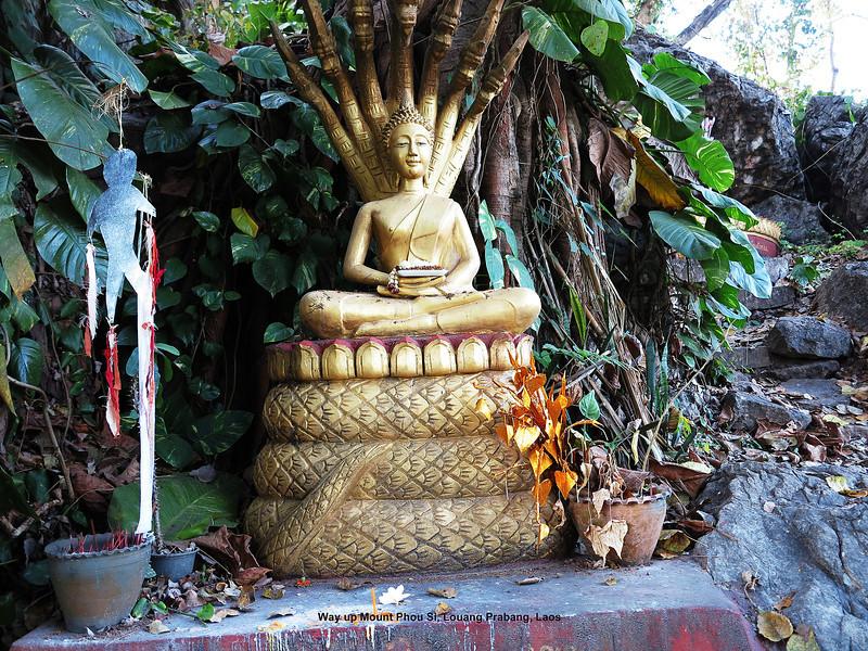 337 Luang Prabang Day 8