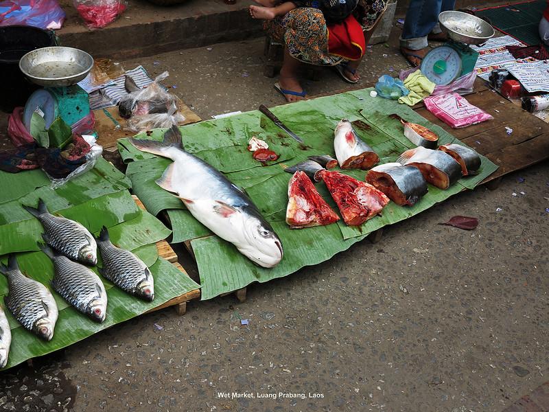 265 Luang Prabang Day 7