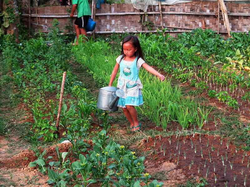 363 Homestay Village, Laos Day 9