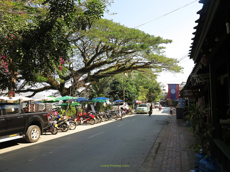 305 Luang Prabang Day 7