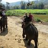 120 Chiang Mai Day 3
