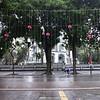 473 Hanoi Day 13