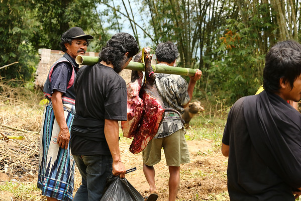 Meat will be distributed to the guests and nearby villages.