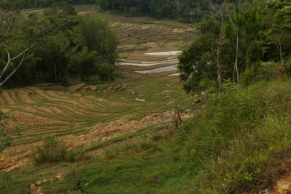Not the best time of the year to see the rice terraces but they are still nice.