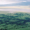 View of the Ngorongoro crater from out hotel room