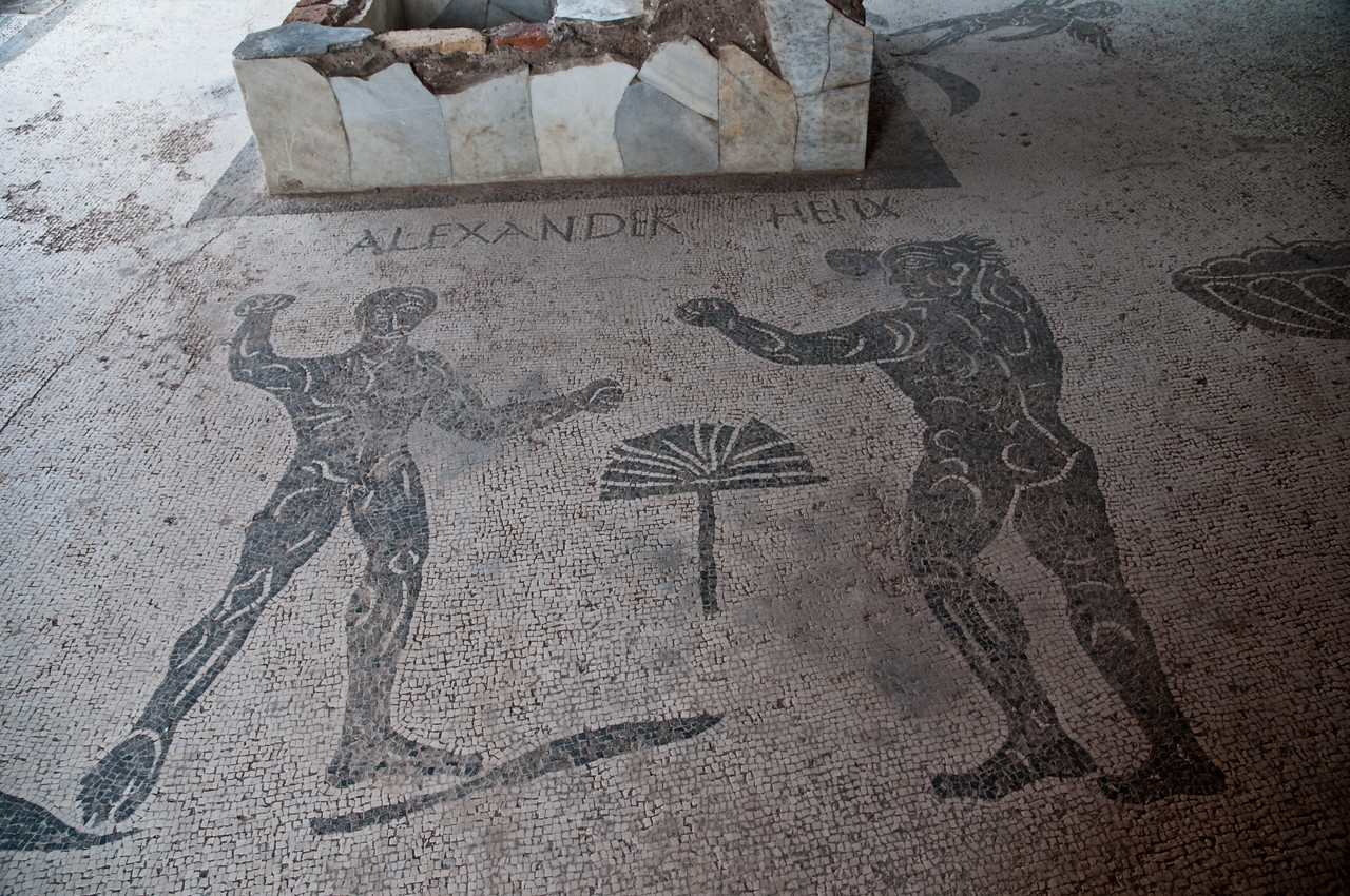 Mosaic of Alexander and Helix. Follow this