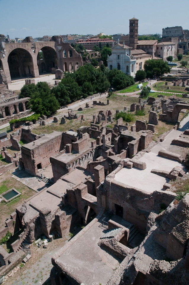 Roman forum seen from the palatine hill, Rome, Italy