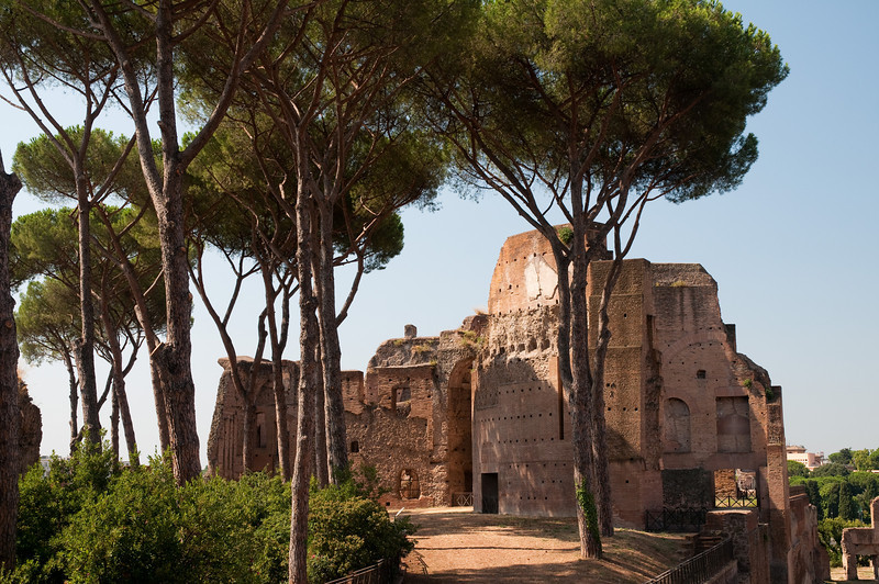 Palatino, Rome Italy