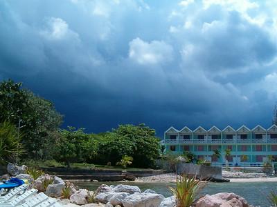 A tropical storm brewing