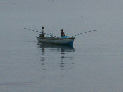 """Getting the """"catch of the day"""""""
