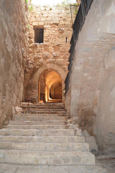 0008_Ajlun Castle