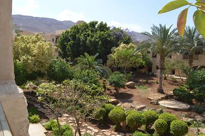 20248_Dead Sea_Moevenpick Gardens