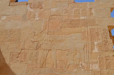30558_Luxor_hatshepsut temple
