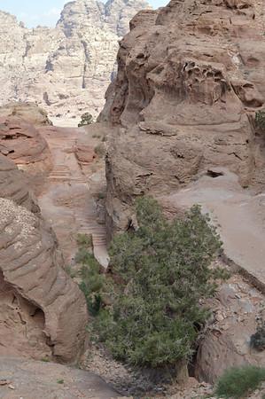 20058_Petra