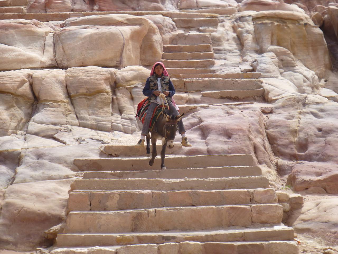 Åsneritt i Petra