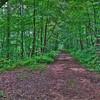 Path to Clubhouse Skylake