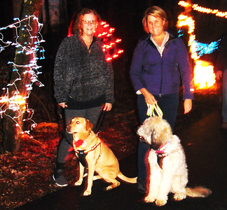 Debbie Blank | The Herald-Tribune Batesville friends Jane Craig (left) and Lori Feldbauer take Lori's dogs, mixed breed Lucy and borderdoodle Maggie, for a stroll.