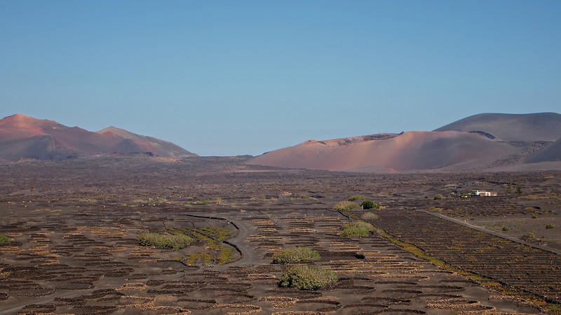 To grow the vines, the vintners drill meters down through the volcanic ash.