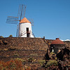 The windmill in the Jardin de Cactus.