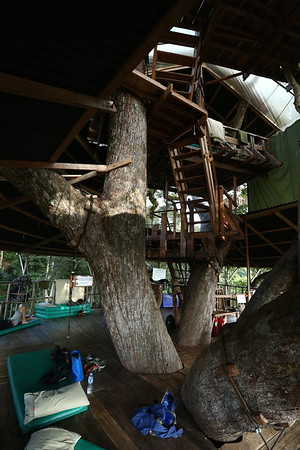 The tour promotes ecotourism and there are only a few places where you can sleep in the forest.