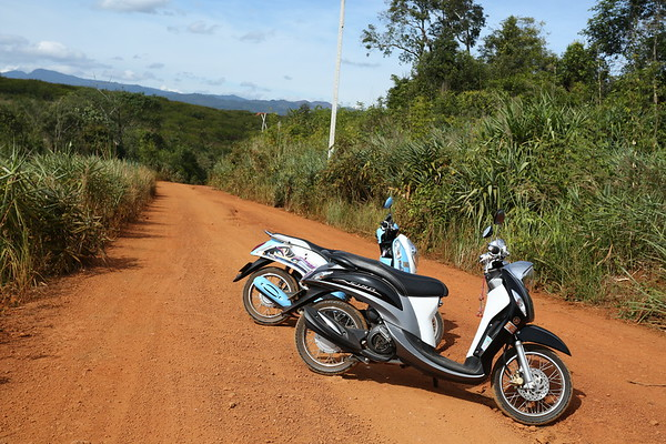 It was the first time when riding motorbikes so wanted some with automatic transmission. It wasn't easy to find them and all of them have at least 125cc.