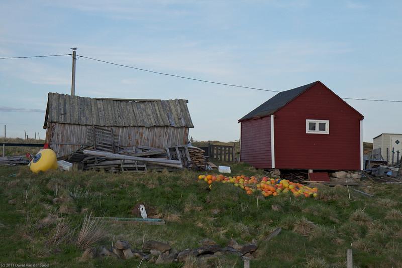 Ekkeroya cottages